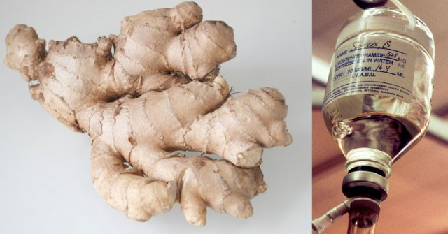 ginger is far effective than chemo