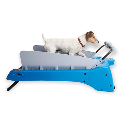 High Tech Gadgets to Pamper Your Dog (15) 1