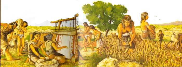 El lapiz prehistoria neol tico for Maquinaria y utensilios para la produccion culinaria