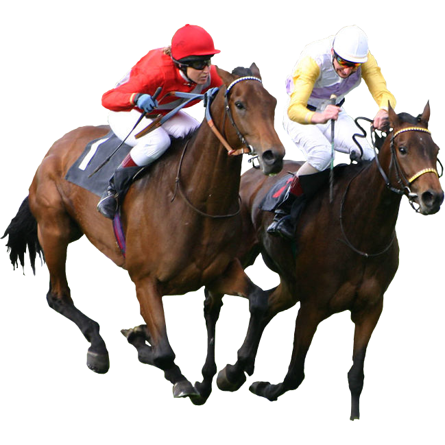 horse raceing betting