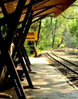 Krishnagiri Station Sanjay Gandhi National Park
