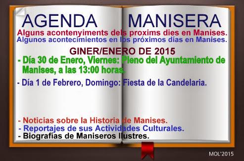 AGENDA MANISERA, SEMANA 05 DE 2015.
