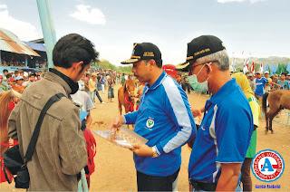 Walikota Tutup Kejuaraan Pacuan Kuda Sambinae Kota Bima