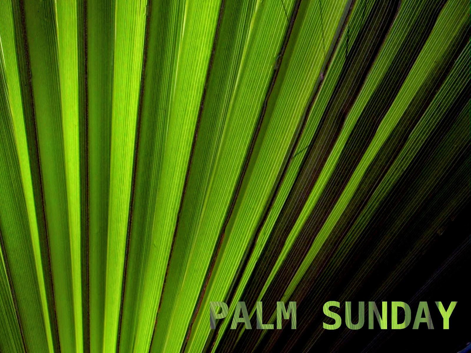 palm sunday - photo #27
