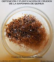 Obtención y purificación de crudos de saponina de quinua