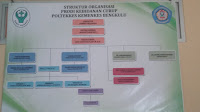 Struktur Organisasi Prodi Kebidanan Curup