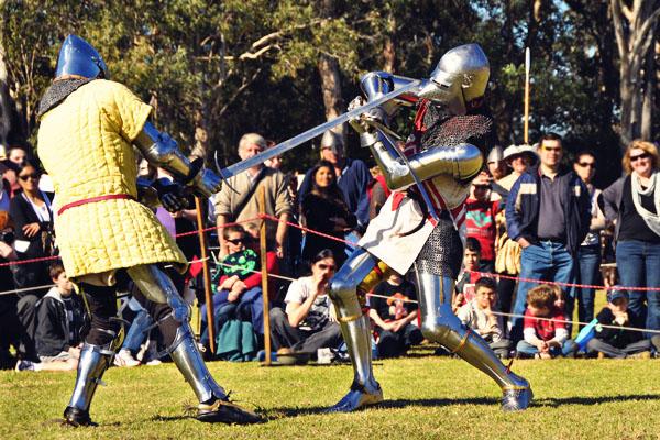 Winterfest sword fight
