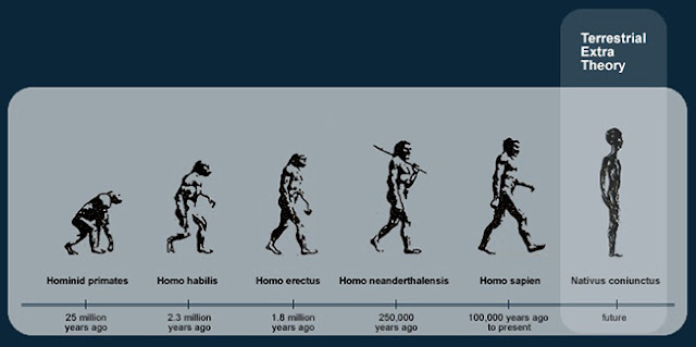a review of popular theories about the evolution of human beings