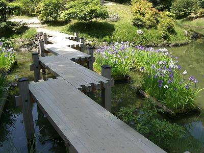 ponte para jardim japonês; jardim japones