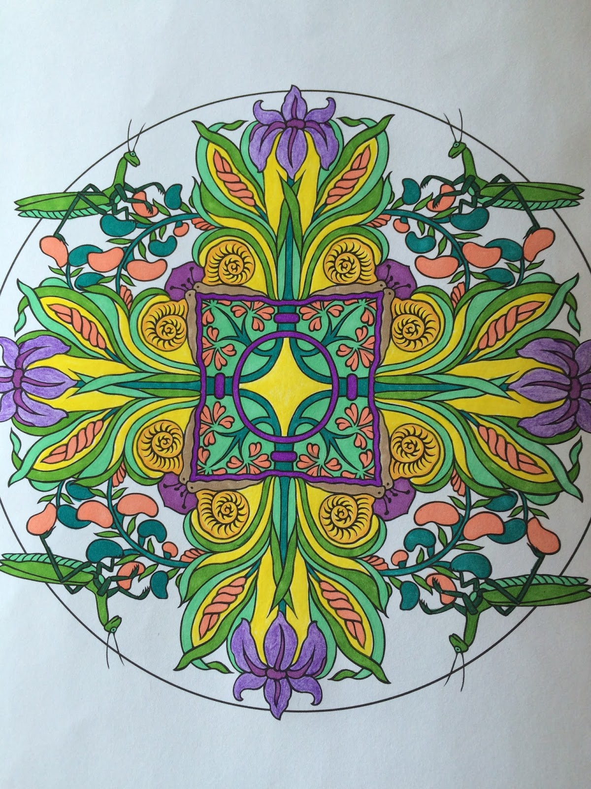 Another Mandala Created By The Jersey Grandpa