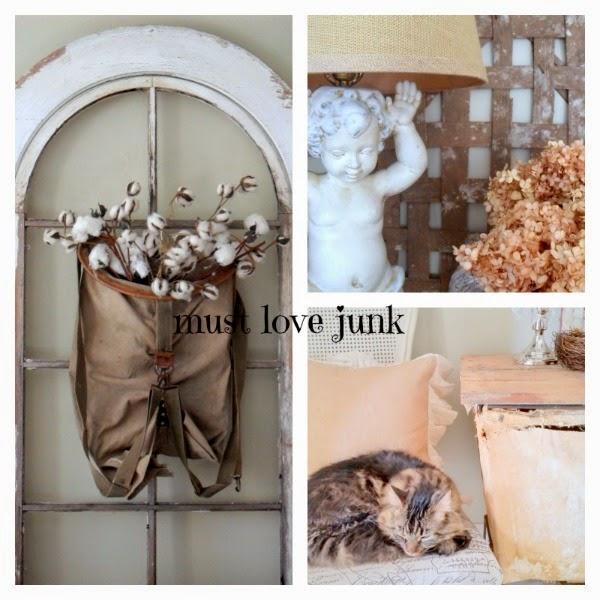 must love junk