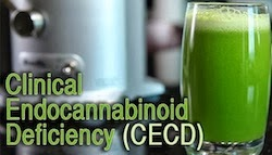 Cannabinoid Deficiency