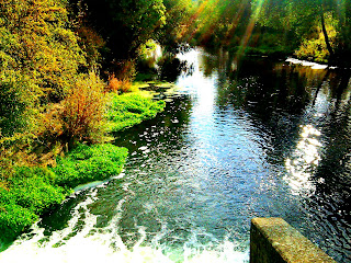 river welland stamford meadows