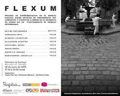Flexum Chile