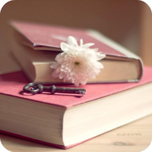 """Leggere è... sognare"""": """"letture romantiche da non perdere"""" # 2"""