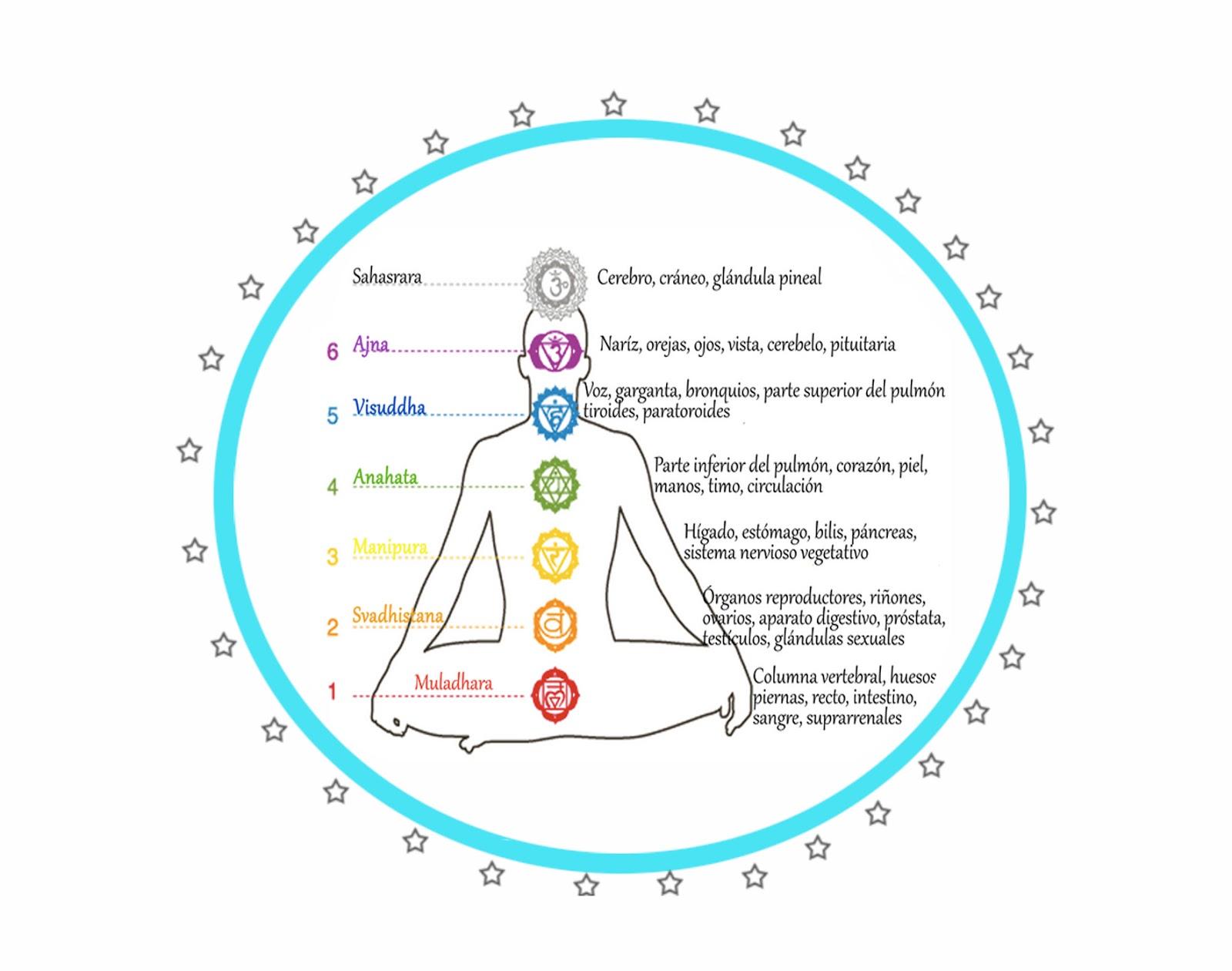 Los chakras o Centros energéticos del cuerpo guardan estrecha ...