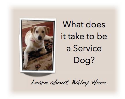 Bailey - Service Dog
