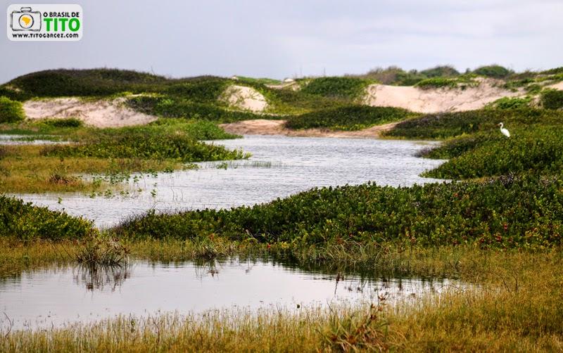 Lagoas e dunas em frente à praia da Princesa, na Ilha de Maiandeua (Algodoal), no Pará