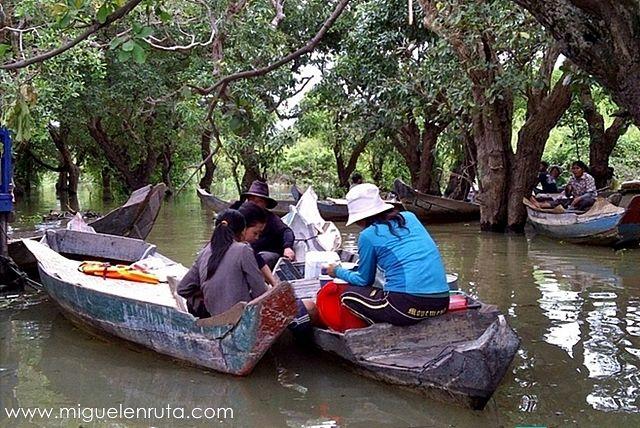 Paseos-barca-manglares