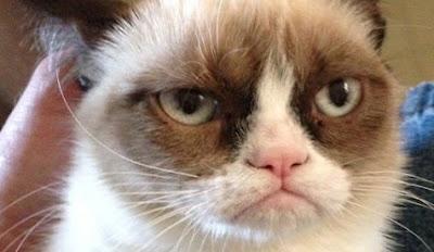 http://2.bp.blogspot.com/-pRCUdypS5Dw/UJqL6bzxOWI/AAAAAAAAAD4/Mh1P96p8hBQ/s400/Grumpy-Cat-Tadar-Sauce.jpeg