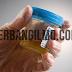Zat zat yang terkandung dalam Urine