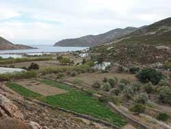 ο Αμπελώναs του νησιού τηs Αποκάλυψηs