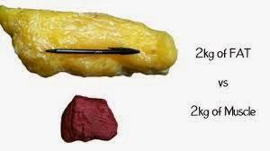 peso muscolo e grasso