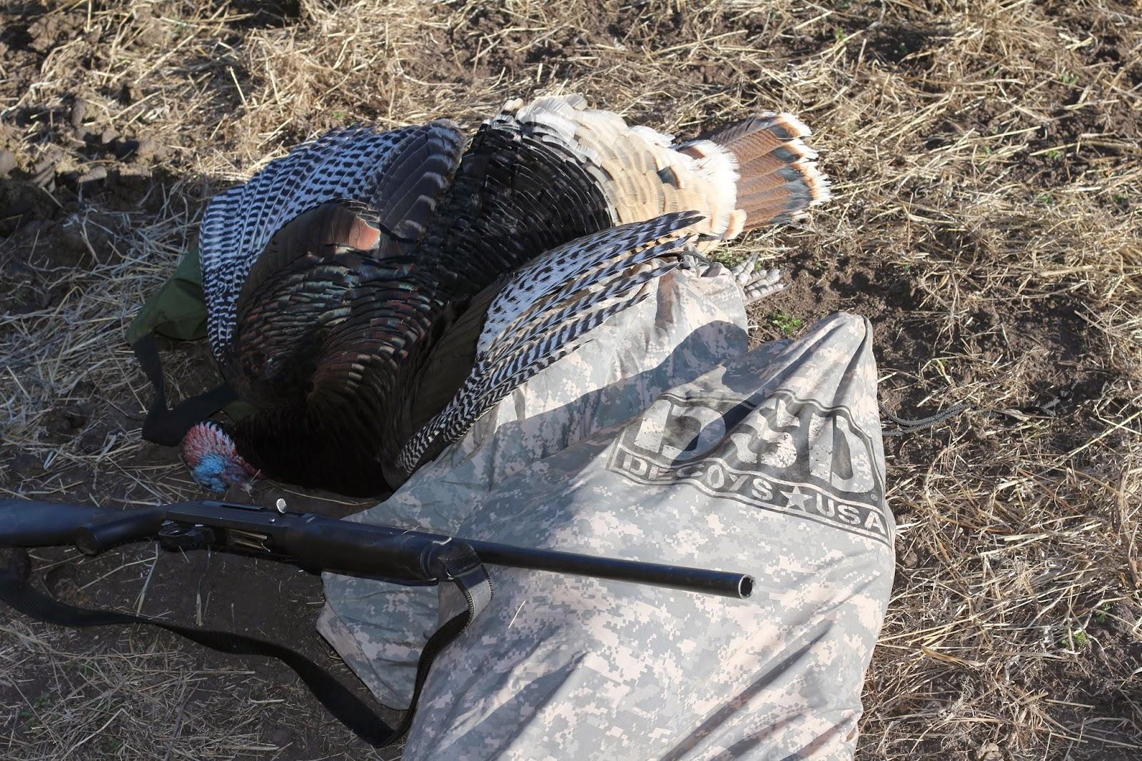 Arizona+Turkey+Hunting+with+Jay+Scott+Outdoors+13.JPG