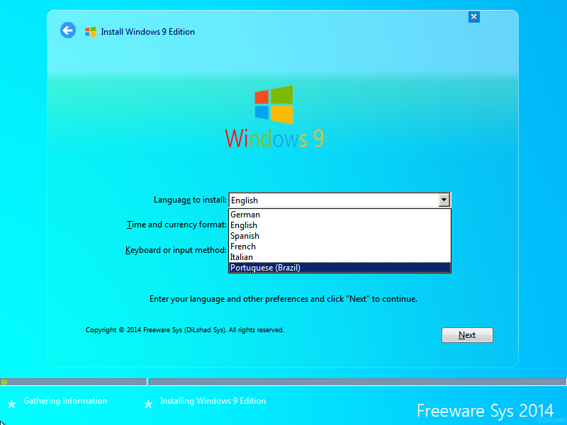 Windows 9 Professional Language Installation 2014