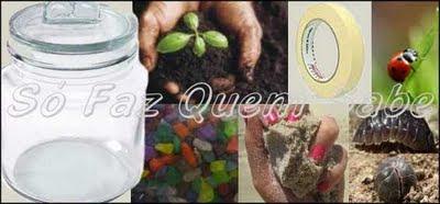 É necessário um vidro de boca larga, além de terra adubada, areia, insetos e plantinhas