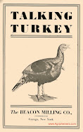 Talking Turkey (1930)
