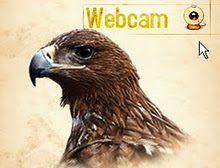 Webcam Imperial