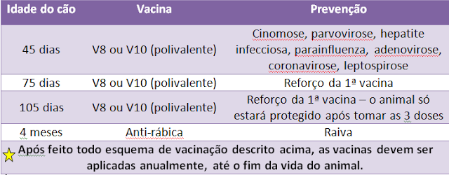 tabela+de+vacinaA7ao+canina.png