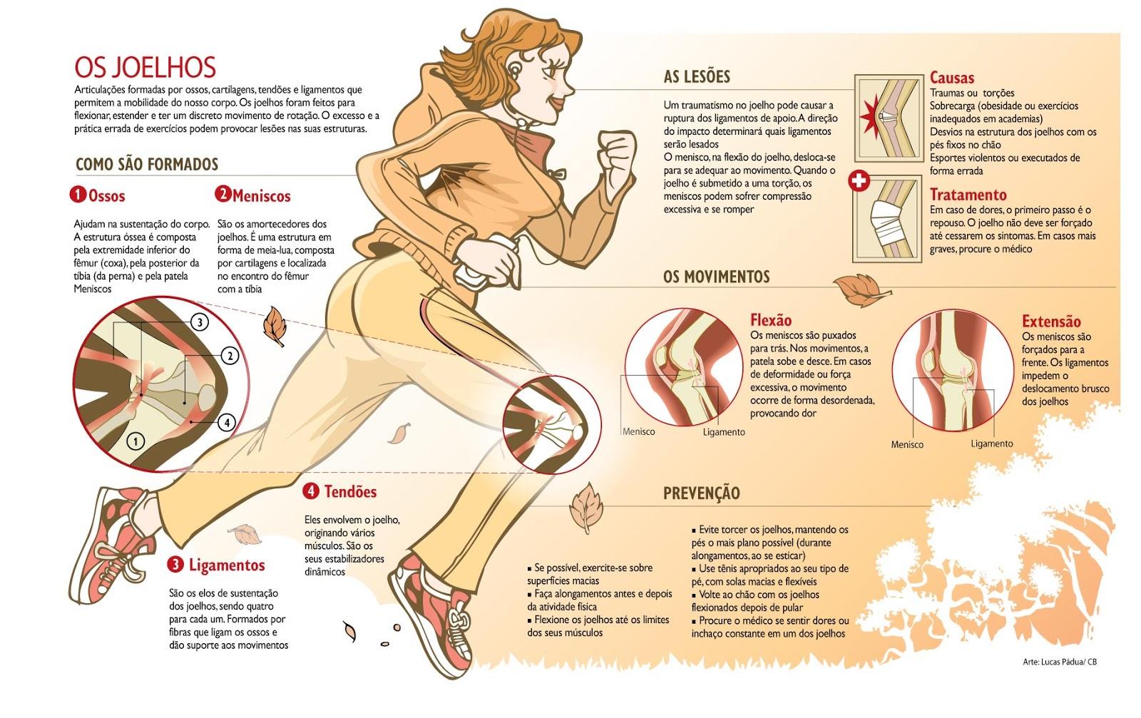 Exerc cio f sico e sa de joelhos for Exercicio para interno de coxa