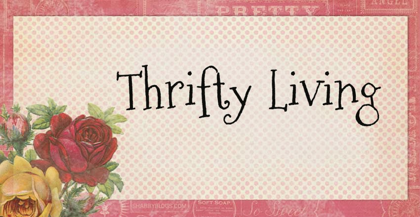 Ashley's Thrifty Living