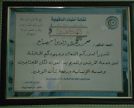 Certificate of Appreciation to Professor Alaa Mosbah