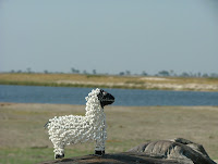 The black spotted bead sheep of Botswana, or just Barry (White) to his friends