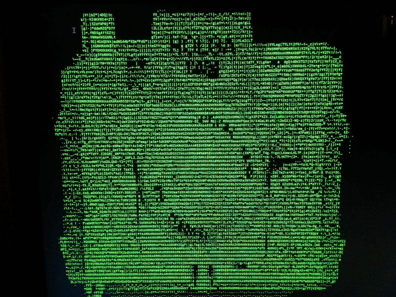 Holga 120d ASCII camera