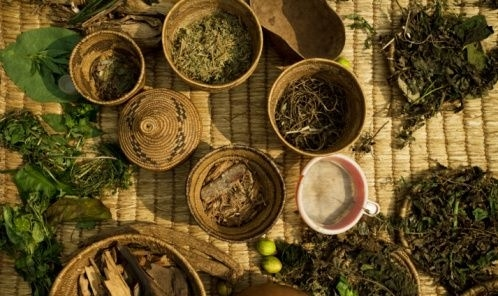 Wiccan Moonsong Boost Your Immune System With Herbs