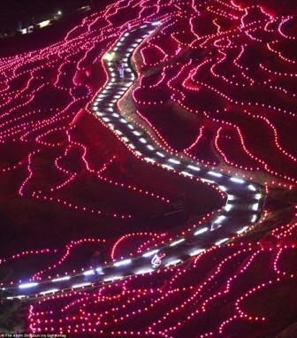 Sawah Unik dengan Hiasan 20.000 Lampu LED