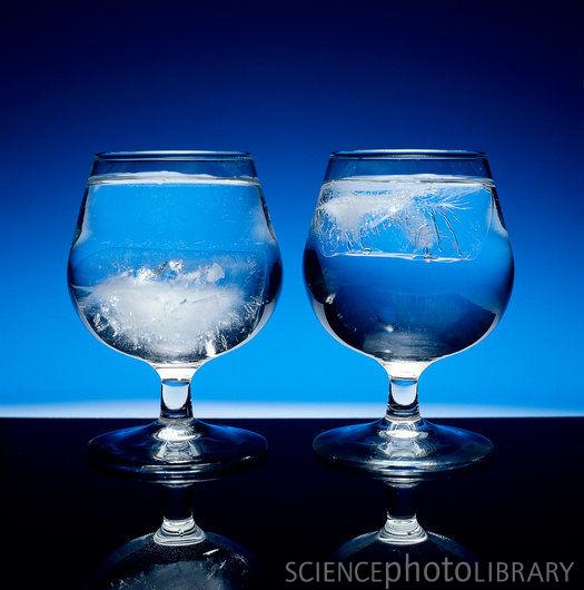 Heavy-water ice cubes sink in ordinary water (left). - deuterium ...