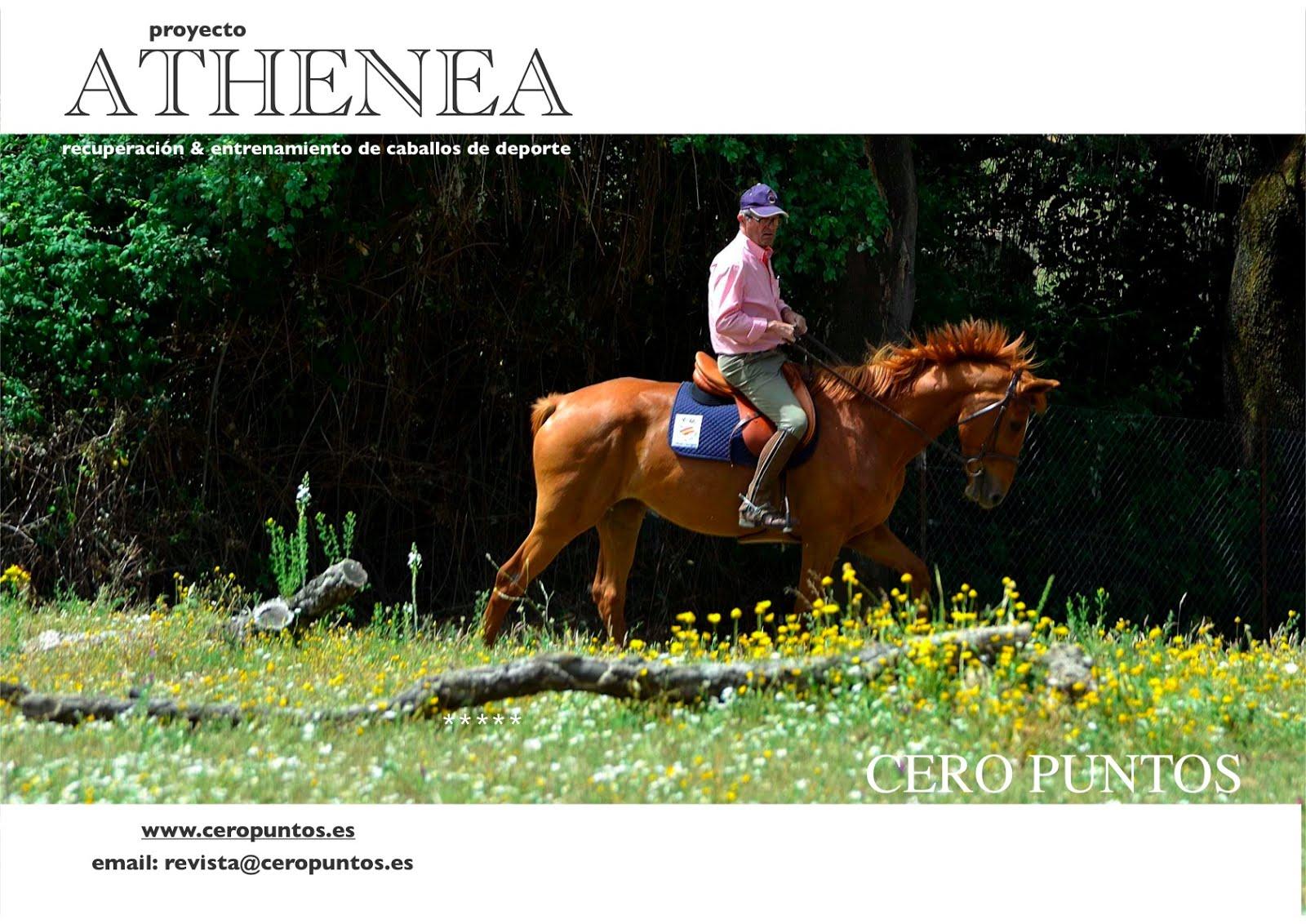 Proyecto Athenea