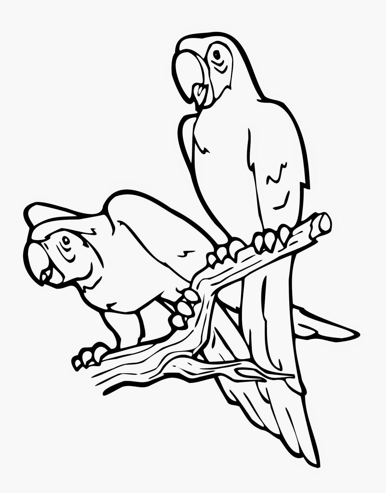 Gambar Adi Percobaan Gambar Sketsa Burung Nuri Outline Di Rebanas