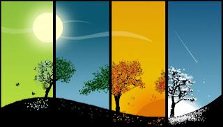 Las 4 fases de la respiración