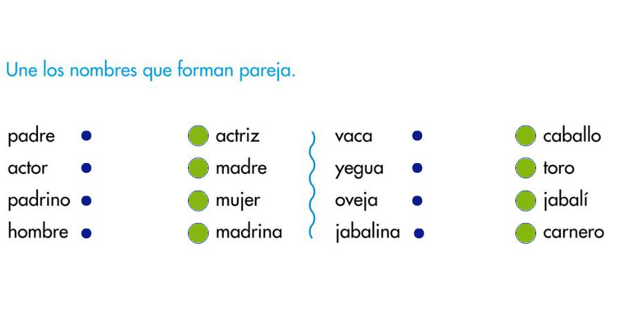 http://primerodecarlos.com/SEGUNDO_PRIMARIA/tengo_todo_4/root_globalizado4/libro/6169/ISBN_9788467808803/activity/U05_165_03_AI/visor.swf