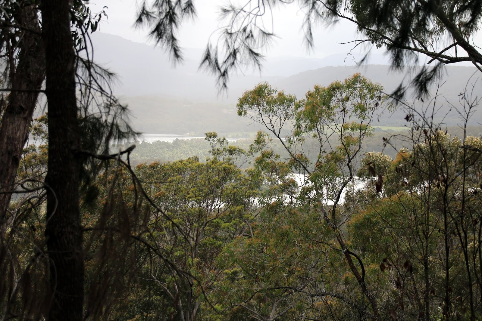 its just my life: Kangaroo Valley Trail
