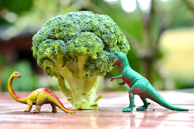 Eat your vegetables dinosaurs