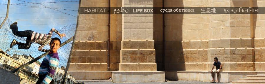 HABITAT / LIFE BOX