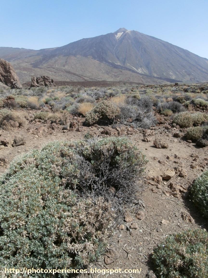 Llano de Majús y monte Echeide