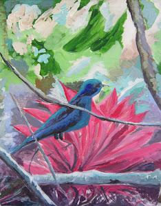 Cayana é um pássaro tropical!